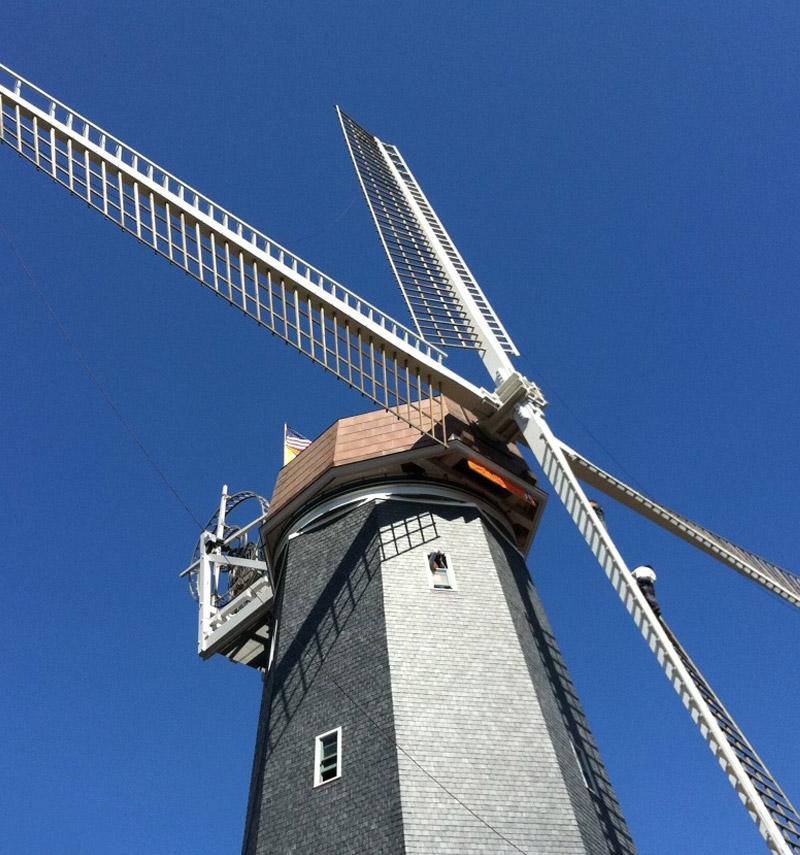 glendyne-slate-Murphy's-Windmill-Golden-Gate-Park-San-Francisco-CA-USA
